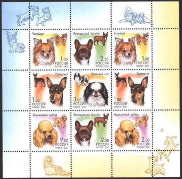 Малый лист почтовых марок - Россия 2000 № 605-609. Фауна. Декоративные собаки
