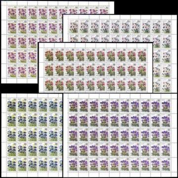 Лист почтовых марок - Россия 1995 № 216 - 220. Флора. Полевые цветы России